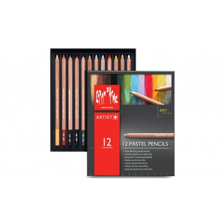 Caran D'Ache Professional Pastel Pencils box of 12