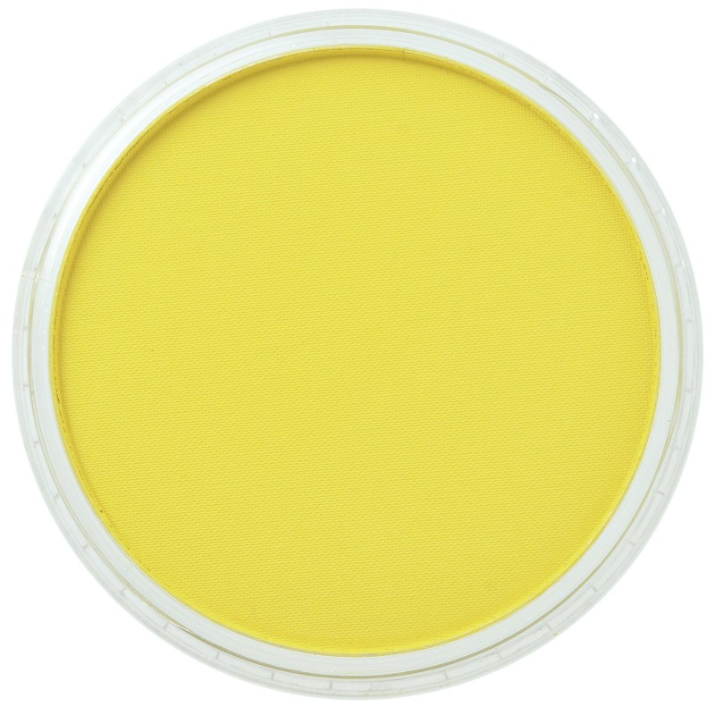 Pan Pastels 9ml - singles