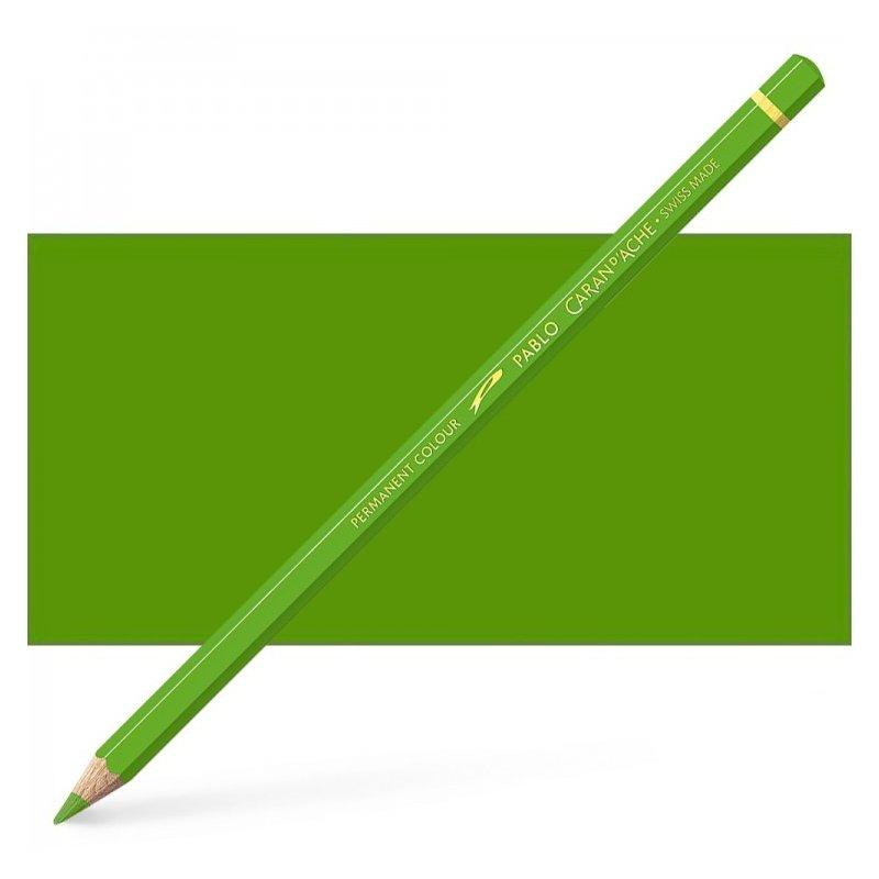 Caran d'Ache Pablo Khaki Green Pencil