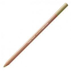 Caran D'Ache Professional Artists Pastel Pencils - Brown Olive 10%