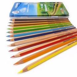 Lyra Graduate Colour Pencils Tin of 12 Assorted Colours