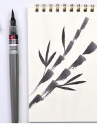 Pentel Colour Brush Pigment Pen