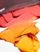 Artists Oil Colour Paints