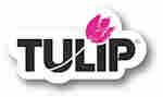 Tulip 3D Fabric Paint